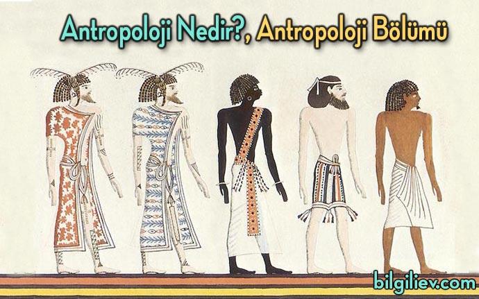 Antropoloji-Nedir
